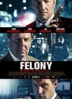 Phim Felony - Trọng Phạm
