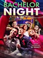 Xem Phim Bachelor Night - Gái Gọi Đêm