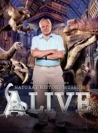 Phim David Attenboroughs Natural History Museum Alive - Bảo Tàng Lịch Sử Tự Nhiên Sống Của David