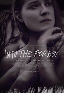 Phim Into the Forest - Lạc vào khu rừng đom đóm