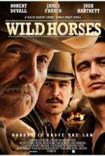 Phim Wild Horses - Bầy Ngựa Hoang