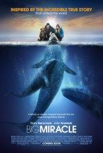 Xem Phim Big Miracle-Giải Cứu Cá Heo