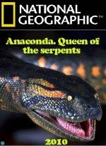 Phim Anaconda: Queen of the Serpents - Trăn Nam Mỹ: Chúa Tể Các Loài Trăn