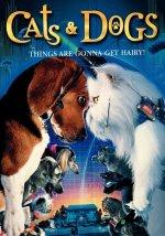 Phim Cats And Dogs - Đại Chiến Chó Mèo
