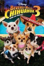 Phim Beverly Hills Chihuahua 3: Viva La Fiesta! - Nữ Minh Tinh Và Chàng Lãng Tử 3