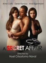 Xem Phim A Secret Affair - Phi Vụ Tình Ái