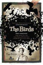 Xem Phim The Birds - Đàn Chim Dữ