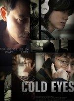 Phim Cold Eyes - Gam-si-ja-deul - Truy Lùng Siêu Trộm