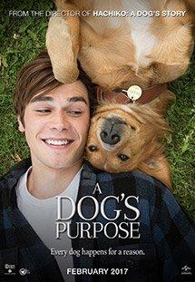 Phim A Dog's Purpose - Mục Đích Sống Của Một Chú Chó
