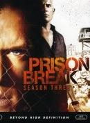 Phim Prison Break - Season 3 - Vượt Ngục 3
