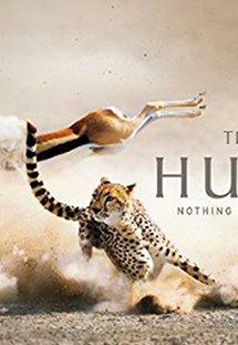Phim The Hunt - Săn Mồi