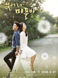 Phim Blow Breeze - Ngọn Gió Đời Tôi